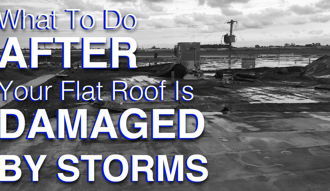 What To Do After Your Flat Roof Is Damaged By Storms