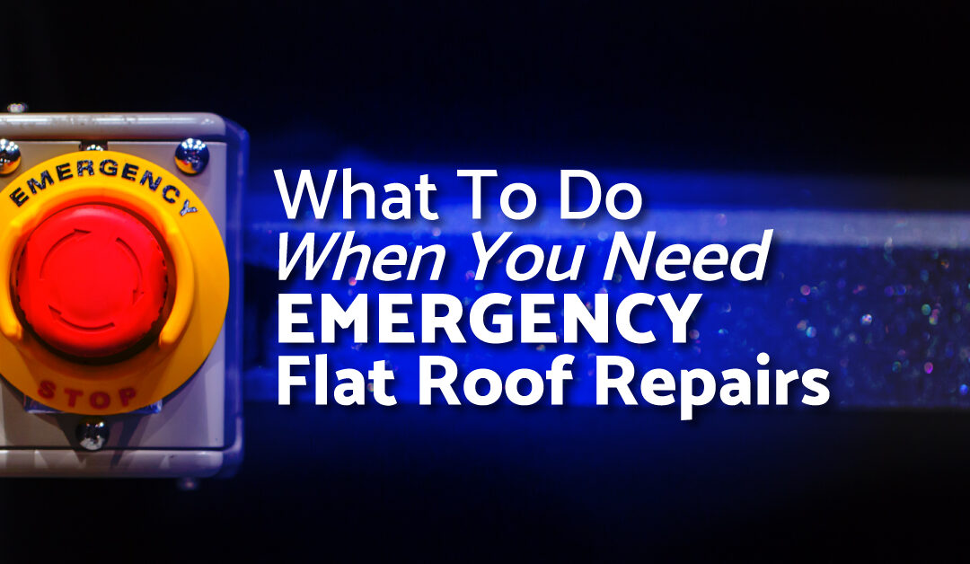 What To Do When You Need Emergency Flat Roof Repairs